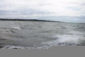 Havets vågade