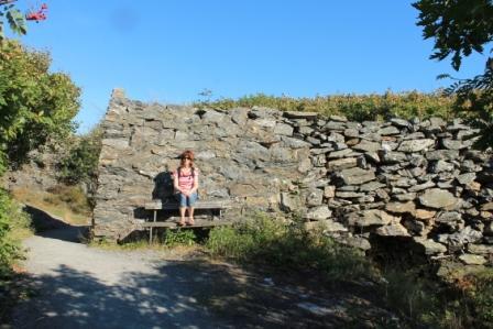 Murrest på Marstrand