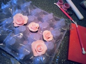 Rosa marsipanrosor