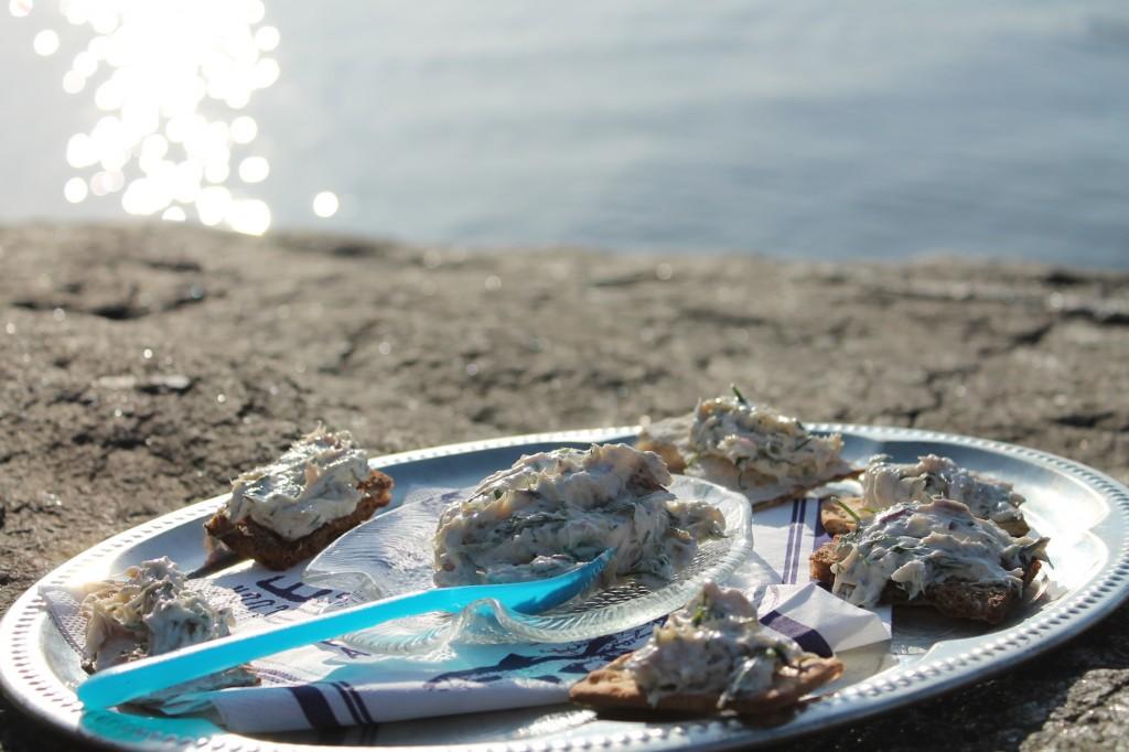 makrillskagen picknick marstrand