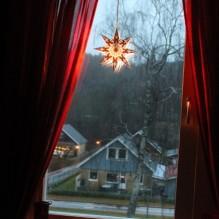 adventsstjärna jul