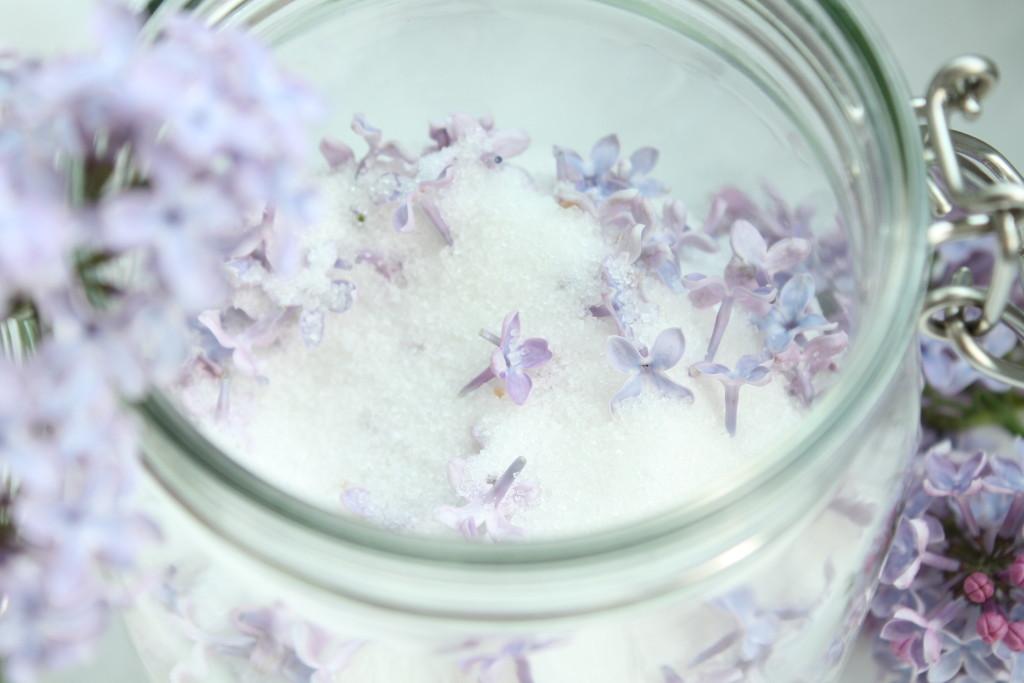 syrensocker bondsyren socker syren