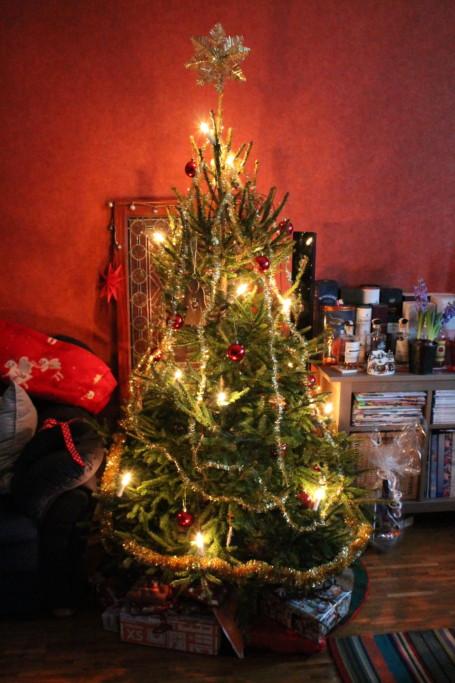 julgran jul riktig gran